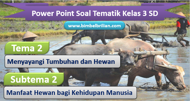 Media Power Point PPT Tema 2 Kelas 3 SD Subtema 2