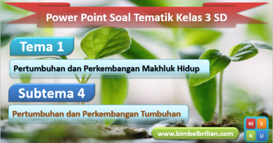 Media Power Point Tema 1 Kelas 3 SD Subtema 3