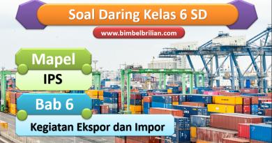 Soal IPS Daring Kelas 6 SD Bab 5 Kegiatan Ekspor dan Impor