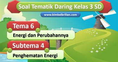 Soal Daring Tema 6 Kelas 3 SD Subtema 4 Penghematan Energi